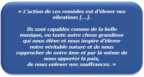 Citation Bach