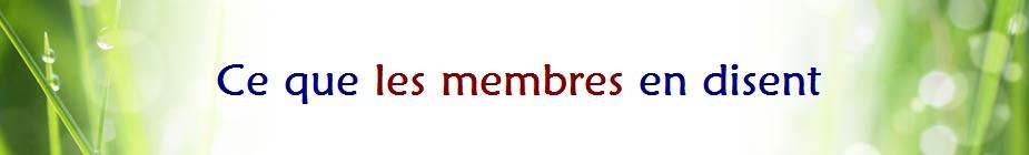 Divider membres