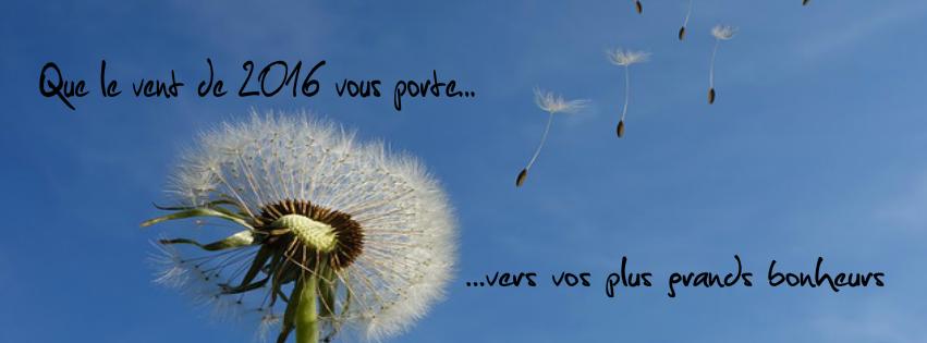Que le vent de 2016 vous porte... vers vos plus grands bonheurs.