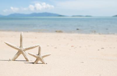 Plage avec étoiles de mer