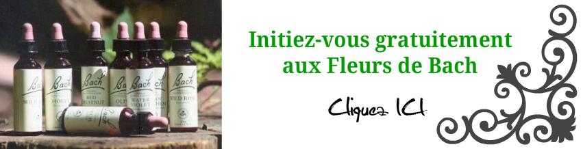 Initiation gratuite aux Fleurs de Bach